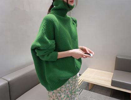 Ganeco turtle knit