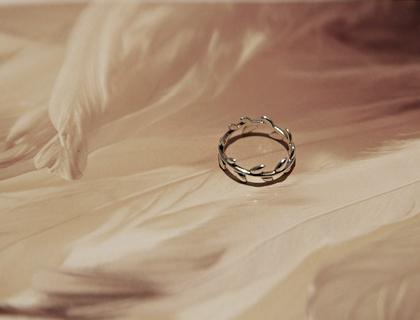 Laurel tree ring